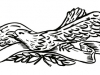 eagle-tattoo-design-2.jpg