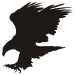 eagle-tattoo-design-4.jpg