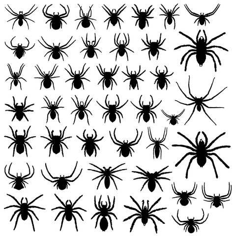 Spider Tattoos on Spider Web Tattoo Meaning Spider Tattoo Designs Spider Web Tattoo   Do