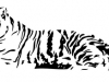 tiger-tattoo-1.jpg