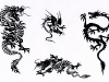 tribal_chinese_dragons